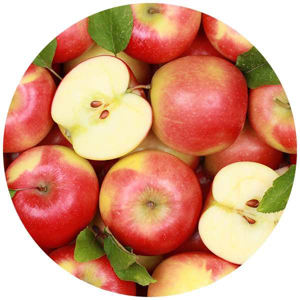 Apple polyphenol